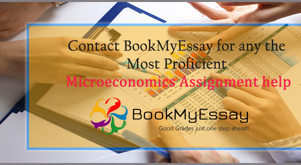 microeconomics assignment help