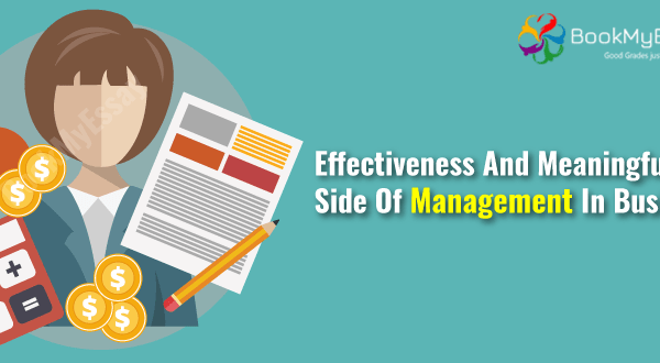 management assignment help