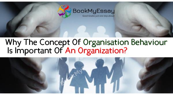 organisational-behavior-assignment-help