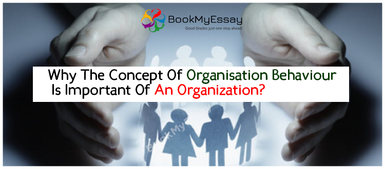 organisational-behavior-assignment-help