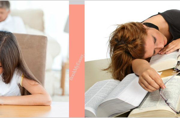 homework-assignment-help-online