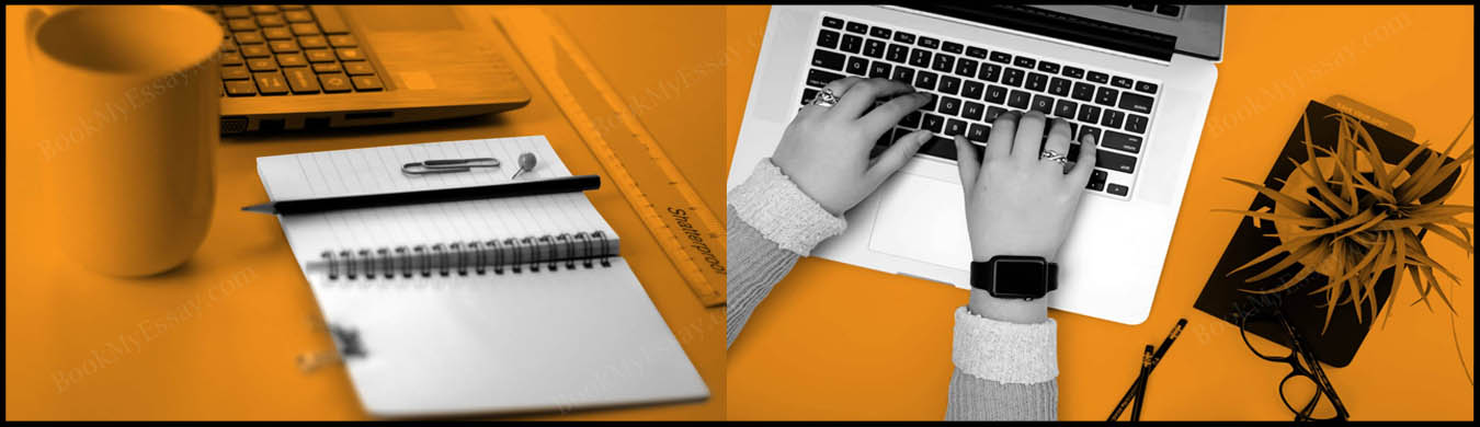 article-writing-service